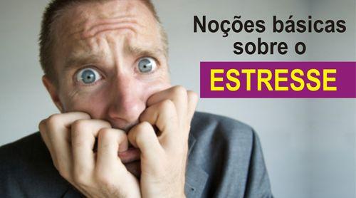 NOÇÕES BÁSICAS SOBRE O STRESS