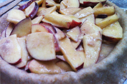 torta apple 41