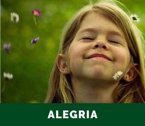 Alegria Icone