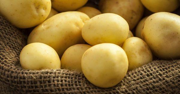 Dica De Ilustracao Para Sua Celula Carregando Batatas 2